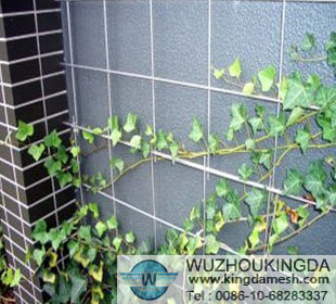 Welded wire mesh wall