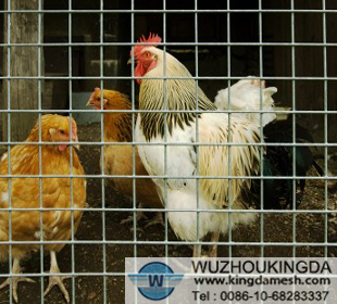 Wire poultry fence